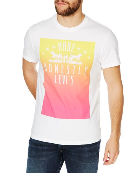 Levi's Made honestly ombre graphic t shirt