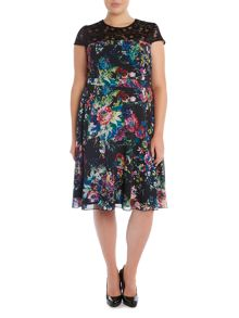 Lace Top Print Fit and Flare Dress