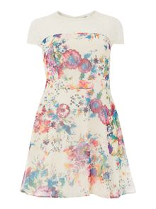 Lace Top Floral Print Fit and Flare Dress