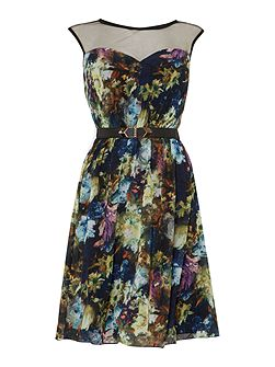 Floral Print Mesh top Fit and Flare Dress