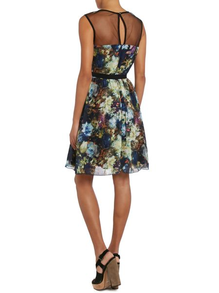 Little Mistress Floral Print Mesh top Fit and Flare Dress