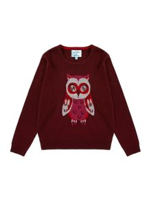 Girls Owl Jumper