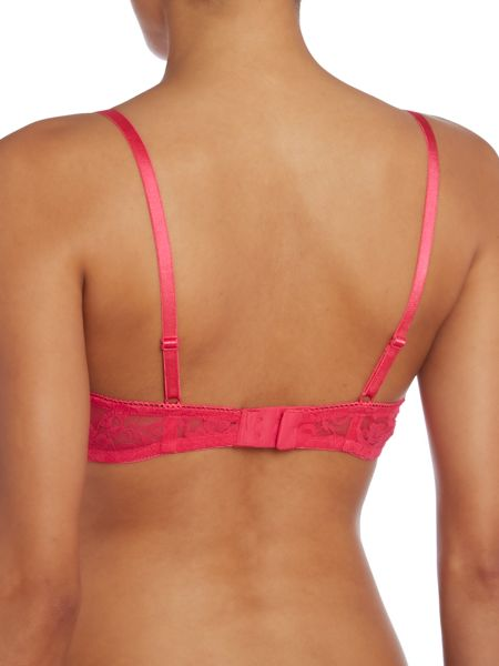 Marie Meili 2 pack jude plunge