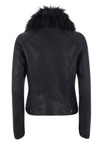 Navy Fur Collar Aviator Jacket