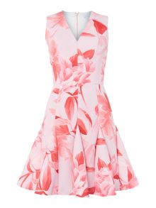 V neck fit and flare rose print dress