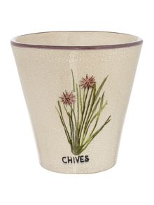 Chives Plant Potter
