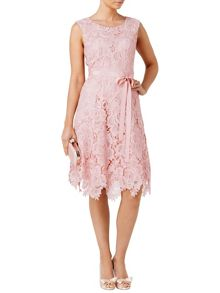 Rose lace fit and flare dress