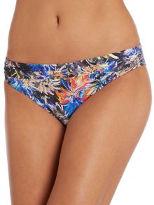 Brush Stroke Biba Goddess Bikini Brief