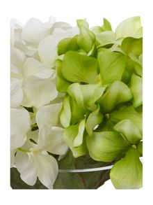 Linea Green and white hydrangea arrangement