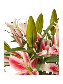 Pink Lillies in vase