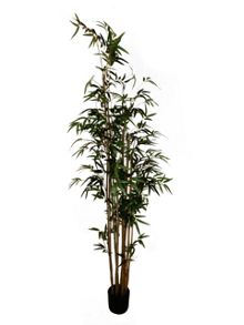 Bamboo Potted tree 195cm