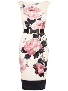 Carrera rose dress