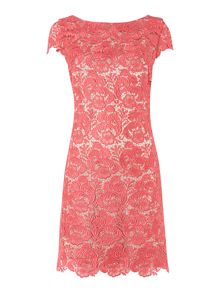Lace guipure cap sleeve dress