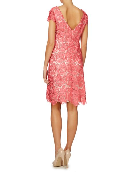 Eliza J Lace guipure cap sleeve dress