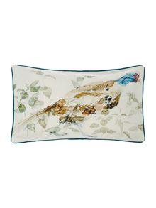 Linea Watercolour pheasant cushion