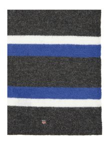 Block College Stripe Scarf
