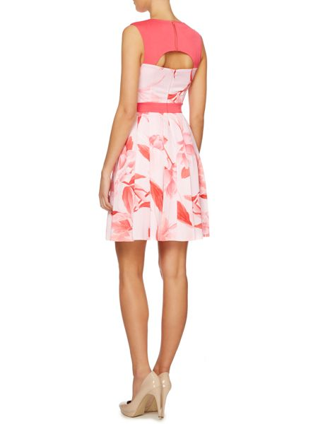 Untold Fit and flare dress with printed panel