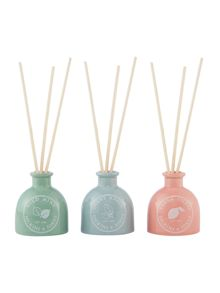 Dickins & Jones Mini diffuser trio