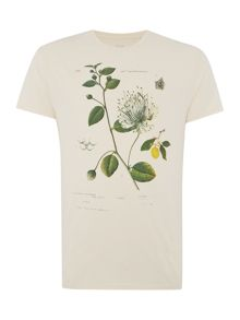 Linea Capers Botanical Print Crew Neck T-Shirt
