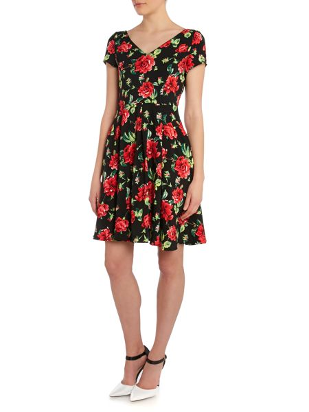 Louche V neck floral print fit and flare dress