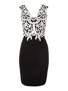 Contrast applique lace top dress