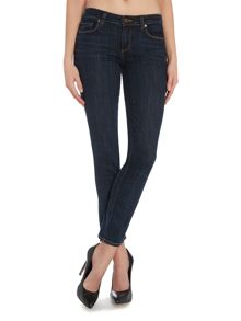 Skyline ankle peg skinny jean in delancy
