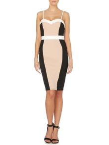 Cami pannelled bodycon dress