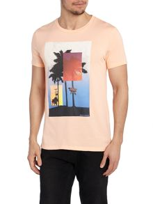 Regular Fit T Shirt In Graphic Palm Tree Print