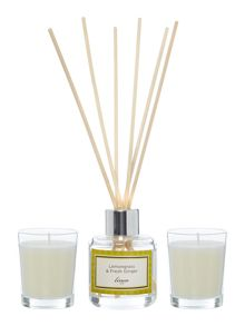 Lemongrass & Ginger Mini Giftset