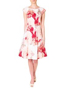 Bernadette rose print fit and flare dress