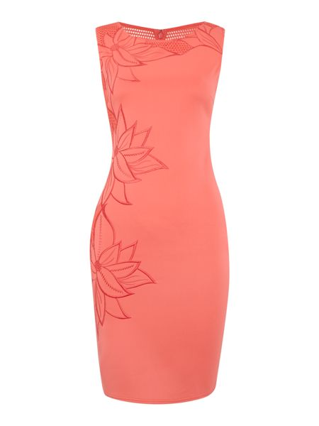 Lipsy Cap sleeve embroidered detail bodycon dress