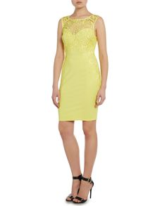Sleeveless lace applique bodycon dress