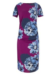 Phase Eight Fraya placement floral dress
