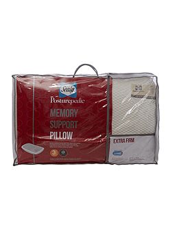 Sealy Memory Foam Pillow