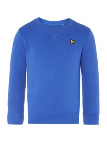 Boys Long Sleeve Crew Neck Sw