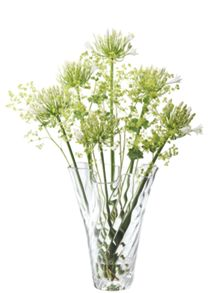 Chiffon Vase H35cm in Clear Optic