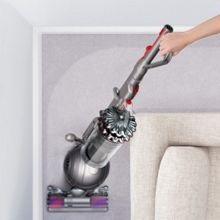 Cinetic Big Ball Animal Vacuum Cleaner