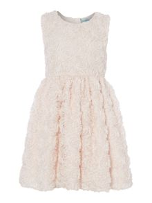 Girls Textured rose dress