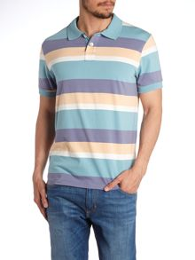 Regular Fit Multi Stripe Polo Shirt