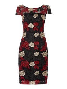 Shubette Cap sleeve dress with floral illusion