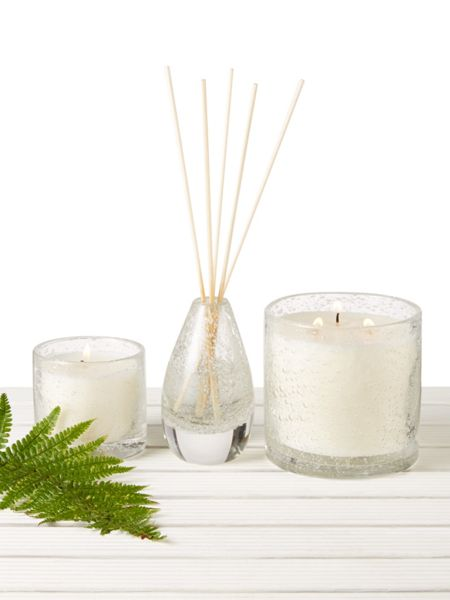 Gray & Willow Wild fern luxury scented reed diffuser