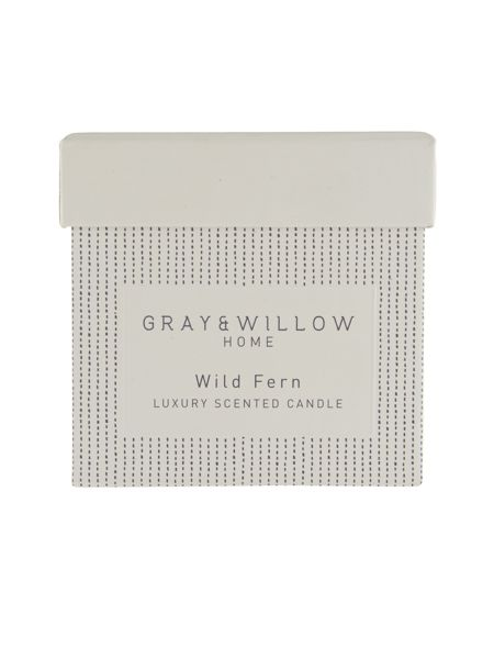 Gray & Willow Wild fern luxury scented candle