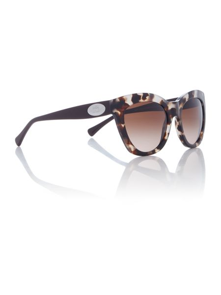 Coach HC8151 female brown cat eye sunglasses