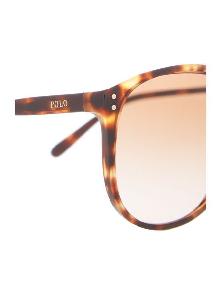 Polo Ralph Lauren Ph4097 female brown round sunglasses