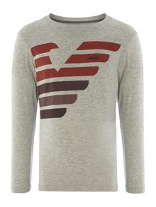 Armani Junior Boys long sleeved t-shirt with stripe logo