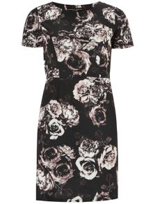 Rose Printed Scuba Pencil Dress