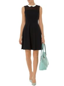 Black Skater Dress with Collar