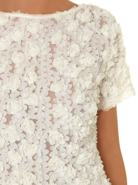 Dorothy Perkins All about rose 3D top