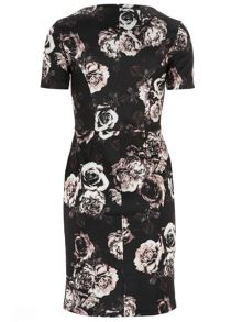 Tall Rose Scuba Midi Dress