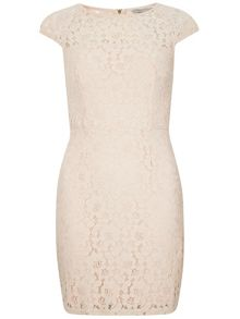 Petite Lace Pencil Dress